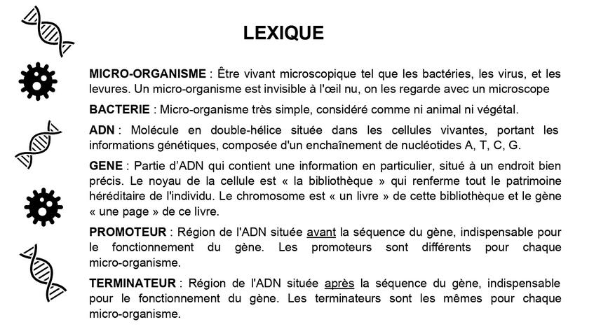 lexique_bacteries de compagnie