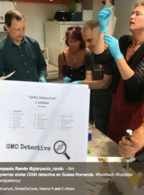 GMO detective